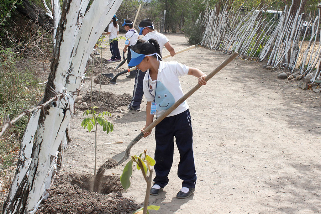 Noticias-2017-Pequenos-de-El-Carrizalejo-se-suman-al-cuidado-del-medio-ambiente-02
