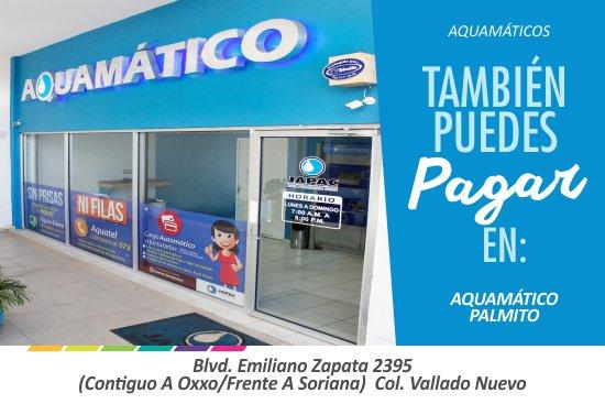 JAPAC-Slider-AQUAMATICOS-PALMITO
